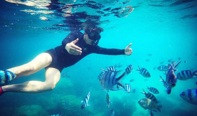 壁纸 海底 海底世界 海洋馆 水族馆 桌面 680_400