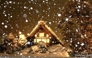 【白川乡图片】雪国的晴与雪,日与夜 【雪国高山的日常+白川乡点灯日小贴士】