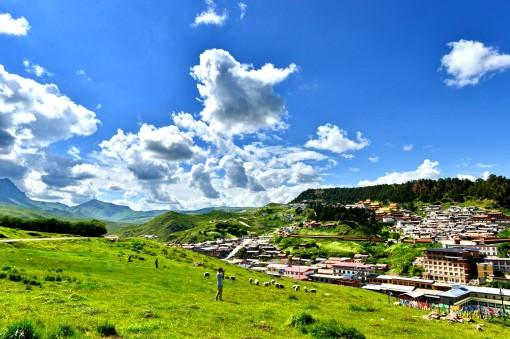 我们在朗木寺山坡之上可以观看到整个郎木镇的全景