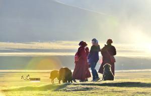 【盐井图片】我去高原追个风——川藏滇13天环游手记