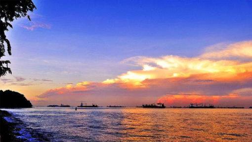 带您远眺灯塔,游览红树林,您可以尽享在海上钓鱼的乐趣,还可以尝试一