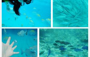 【坎昆图片】浅蓝的加勒比明珠——坎昆
