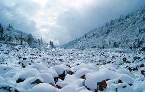 【海螺沟图片】在成都吃,去雅家梗看雪,在海螺沟泡温泉的日子。