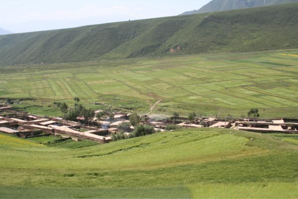 青海掠影----西宁,青海湖,格尔木,青藏线东段等