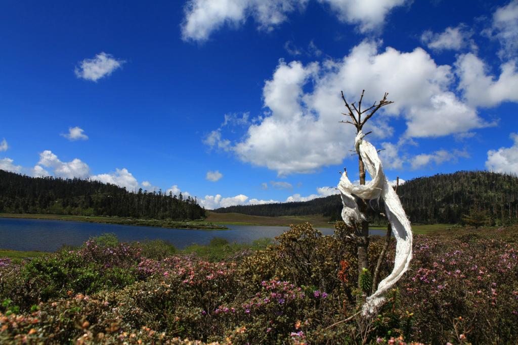 新疆i小天池风景区
