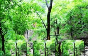 【房山图片】上方山观雨——京城61年来突袭大暴雨的这一天2012.7.21