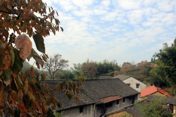 萧山义桥寺坞岭,追逐韩栋故乡的原风景