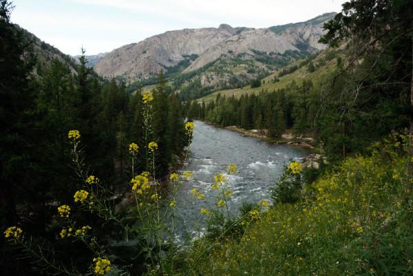 新疆旅游攻略 丈量大地 第四站:大美北疆  可可托海  小河,流水,树林