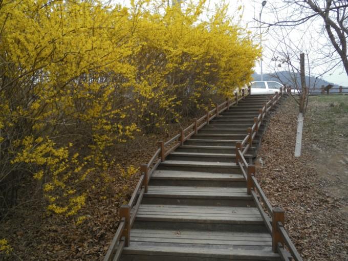 西山水库(西山湖)作为大背景,围绕水库建设的环状集绿化、环保教育、休闲娱乐与风景欣赏于一体的敞开式公园。公园环水库修建了人行木栈道6公里,其中有休闲木椅、观景台、亭等。各种种植树木都标有中英文说明,便与游客了解。4月,