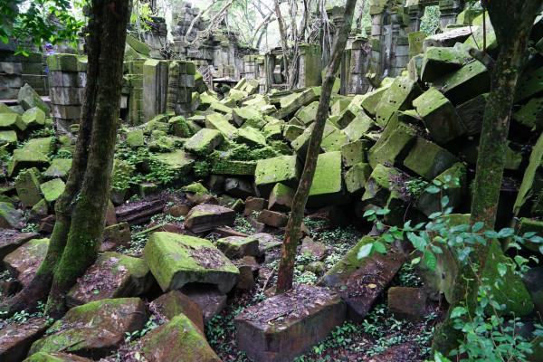 壁纸 风景 森林 桌面 600_400
