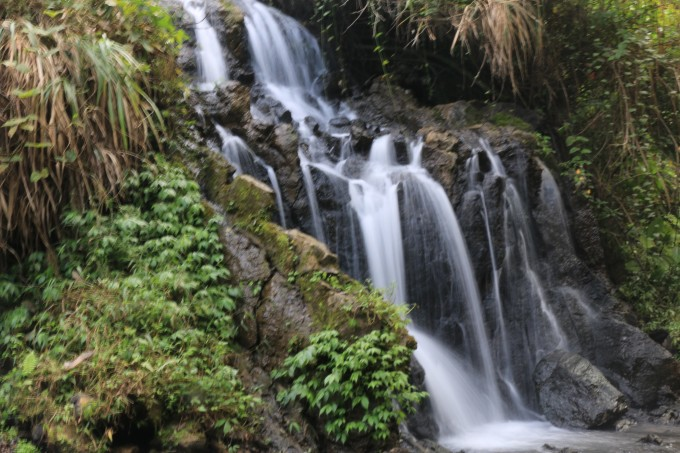 小坑国家森林公园总面积1.6万多公顷,林中动植物资源丰富。公园内有一个400多公顷的人工湖,湖中有岛,湖光山色相映成趣。园内的含氡温泉为省内少有,泉水中的微量氡元素对风湿病有很好的疗效,对调整人体心血管系统、神经系统和内分泌机能也有很大好处。目前,这里已建成温泉疗养区、森林别墅区、湖岛度假区。并开辟了多种
