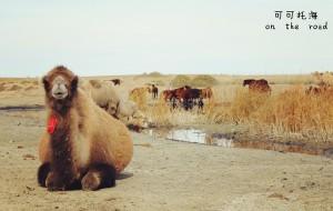 【富蕴图片】北疆行——可可托海