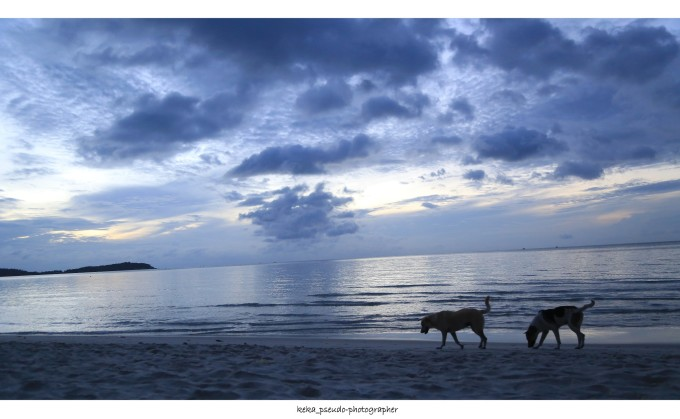 窗户海滩风景图片
