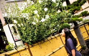 【镰仓图片】意外怀孕怎么办--迟到三年的日本之旅(东镰阪京9日)