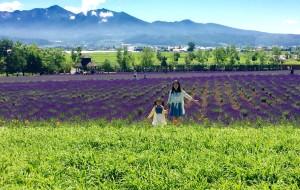 【美瑛町图片】2015这个夏天北海道亲子八日自由行,超详细攻略,准备带娃自由行的看过来!