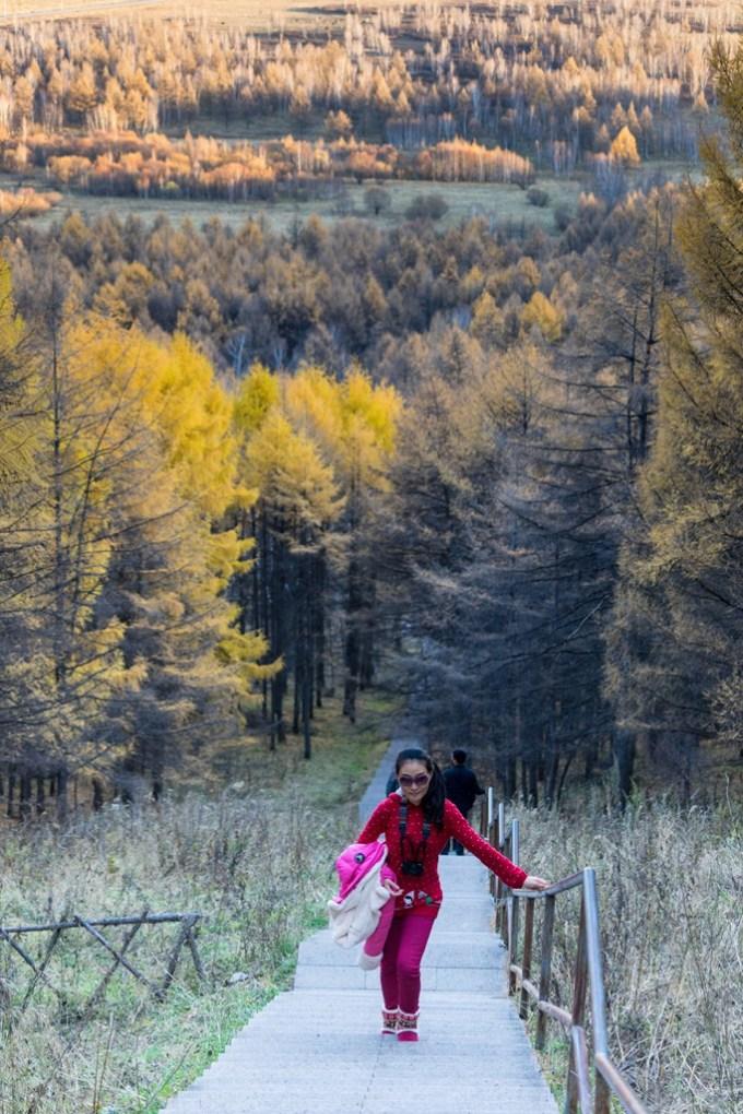 中国最美的秋天,风景在路上【呼伦贝尔,阿尔山】