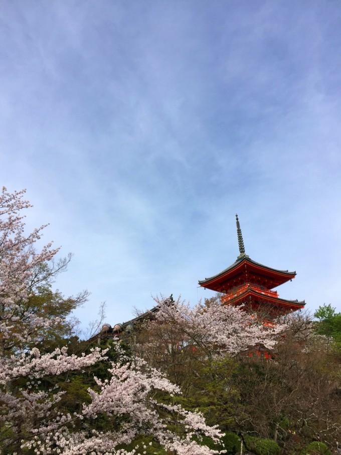壁纸日本风景竖屏