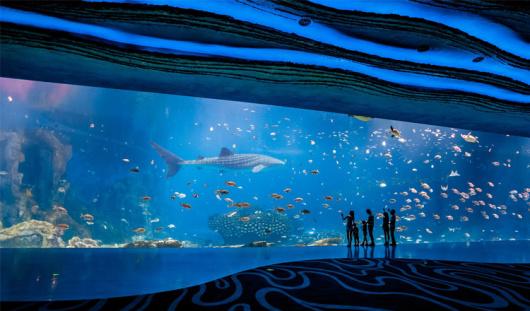 海洋动物主题公园