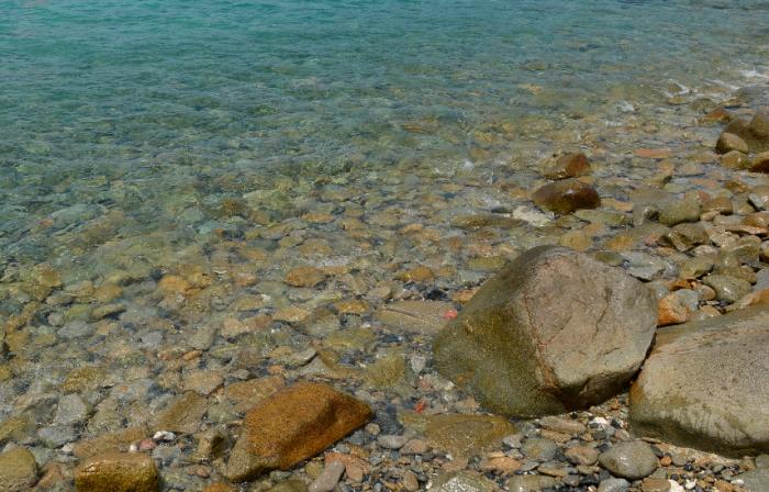 关于芽庄珍珠岛和黑岛的水质问题