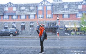 【蒙特利尔图片】一叶知秋,钢牙妹的国庆加拿大之旅(多图乱入)