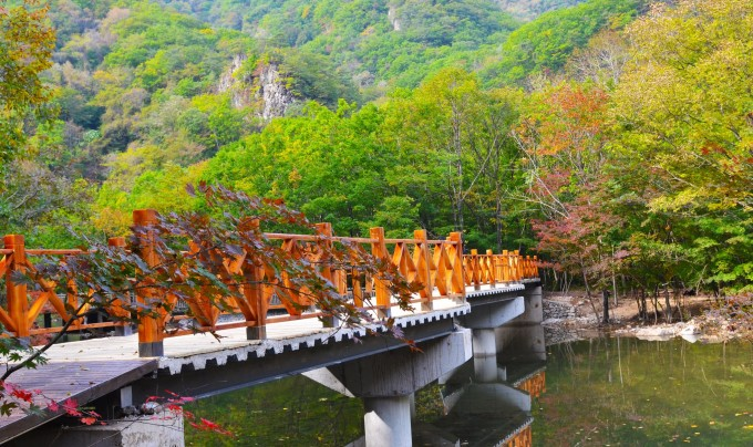 蒲石河森林公园       图片