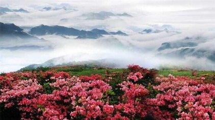 娄底大熊山国家森林公园门票