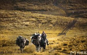 """【塔城图片】无瑕———我是大自然的一颗种子#记梦中的新疆#(和""""摄影师们""""的北疆采风半月行,小众景点游)"""