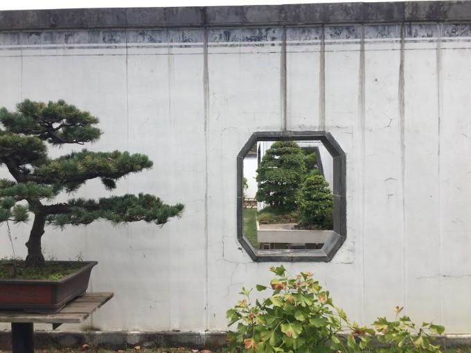 以孝为主题的植物雕塑