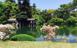 【金泽市图片】遇见金泽的夏天