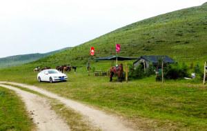 【唐布拉草原图片】单身的我们一起去坝上草原原始景区里策马奔腾