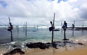【雅拉国家公园图片】印度洋的眼泪——斯里兰卡,一个让人着迷的地方