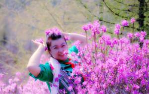 【双鸭山图片】游记       漫山遍野的红杜鹃----双鸭山四方台紫云岭
