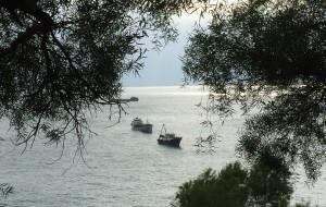 【外伶仃岛图片】【王小小的旅途】珠海行(之三)——闲逛外伶仃岛