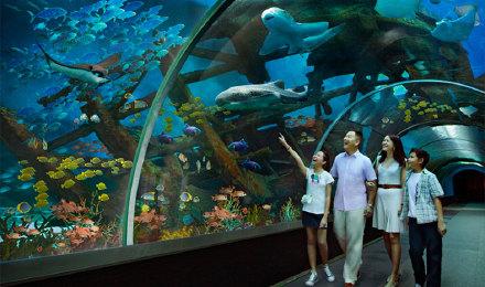 e.a海洋馆 含海事博物馆