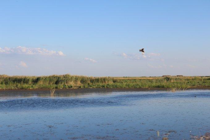 内蒙古图片